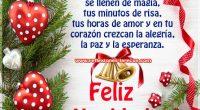 Felíz Navidad